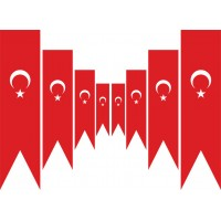 Türk Kırlangıç Flama (50x150 cm)
